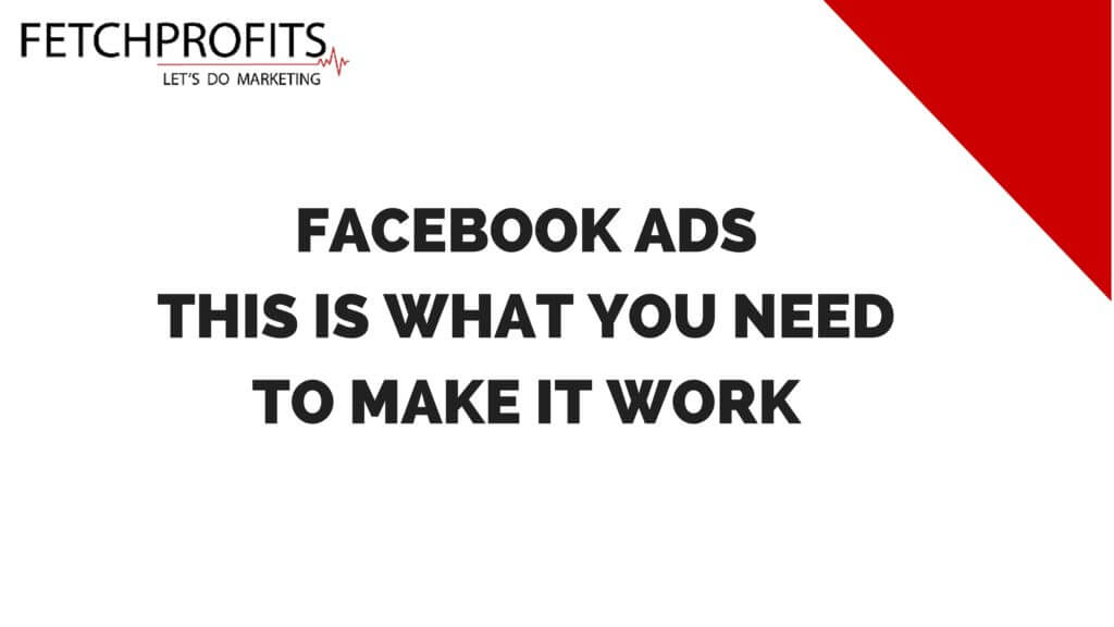 Facebook Ads Basics: What It Really Takes To Get Results?