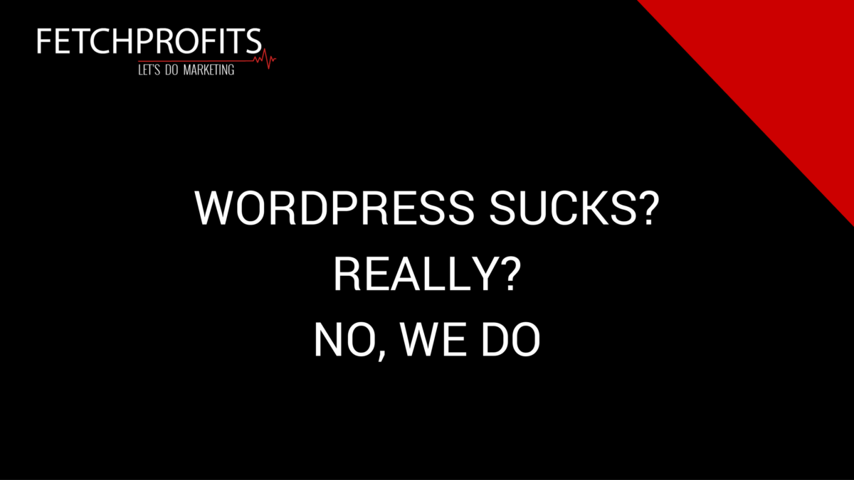 WordPress Sucks? No, it Doesn't. But We Do