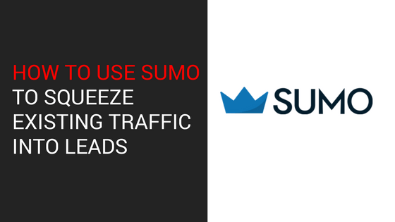 How to Use Sumo To Squeeze Existing Traffic Into Leads