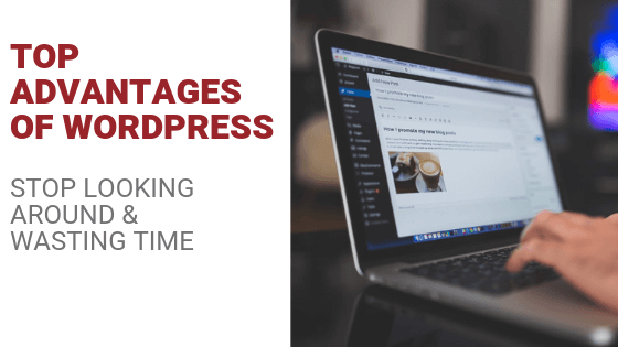 Top Advantages of WordPress Revisited